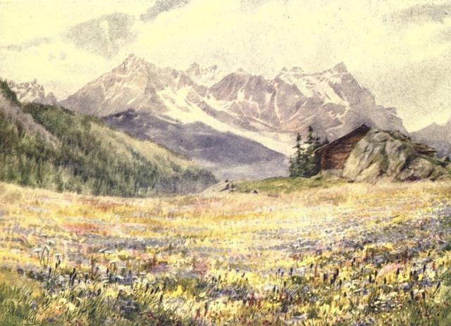 Bild mit Bergen und einer Hütte