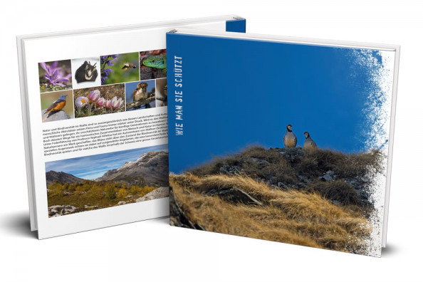 Buch - Birds and biodiversity of Valais